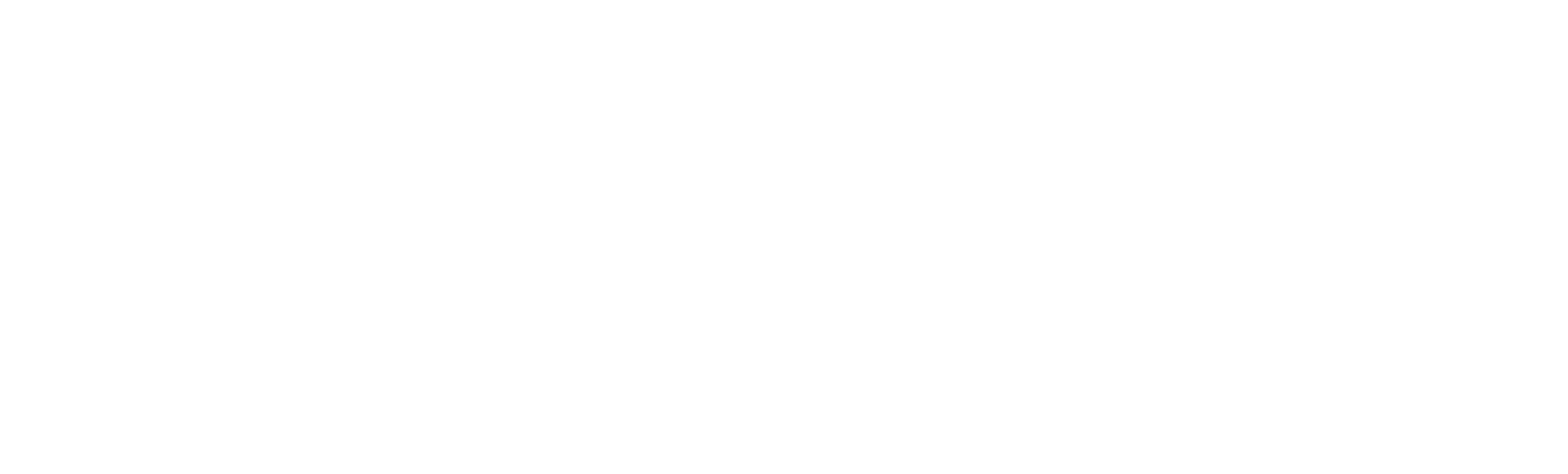 logo transparant wit